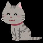 pet_cat_sit[1]