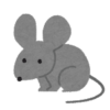 color10_gray_mouse[1]